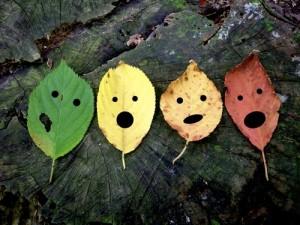 dissonant leaves