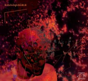 Sonopsies