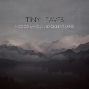fs011-tiny-leaves-800x800