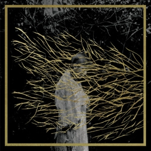 forest_swords_lp_600