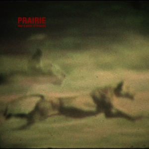 PRAIRIEhounds