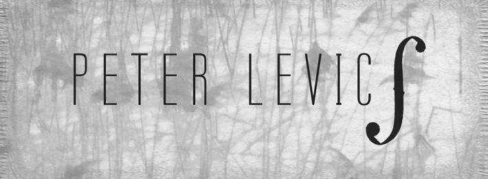 Peter Levics