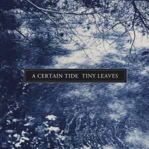a-certain-tide-cover