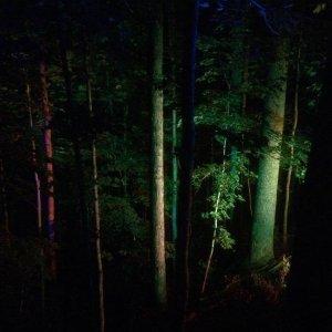 Searchlight Casting