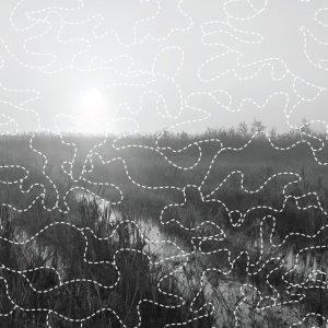 soundscapes-of-summer