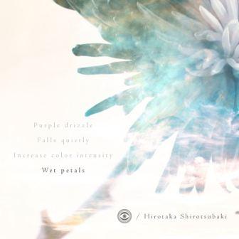 thumbnail_hirotaka-shirotsubaki-wet-petals-cover