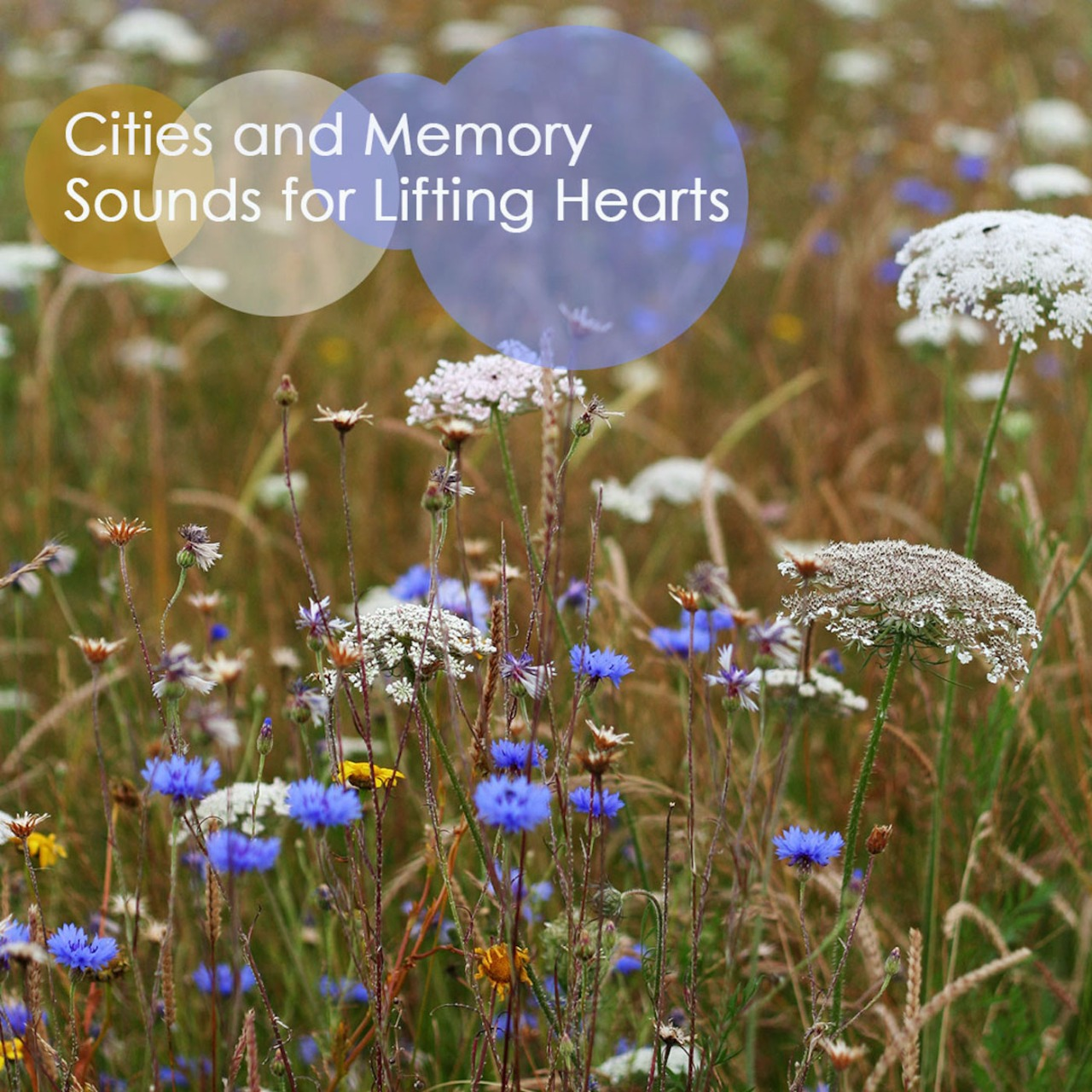 Cites and Memory ~ Sounds for LiftingHearts